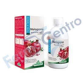 Succo Melagrana C/selenio500ml